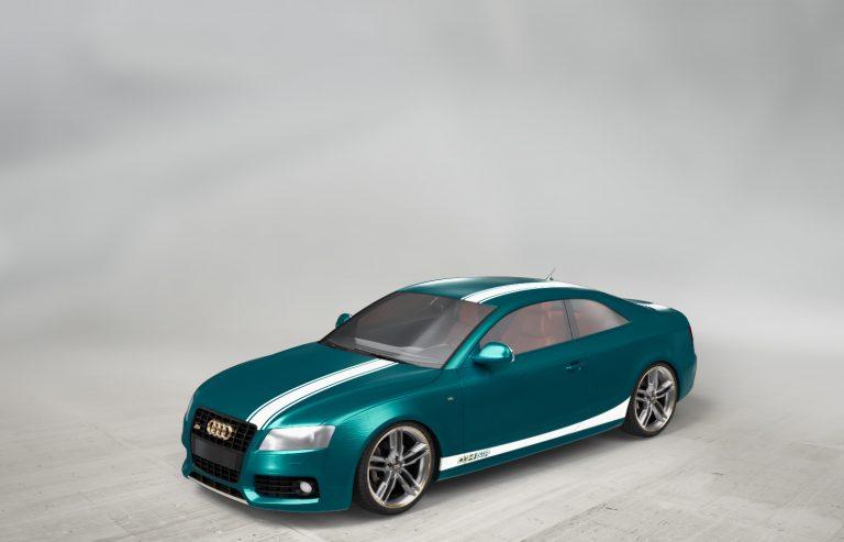 CAR (31)